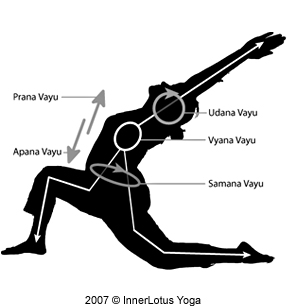 the 5 prana vayus the 5 winds innerlotus yoga